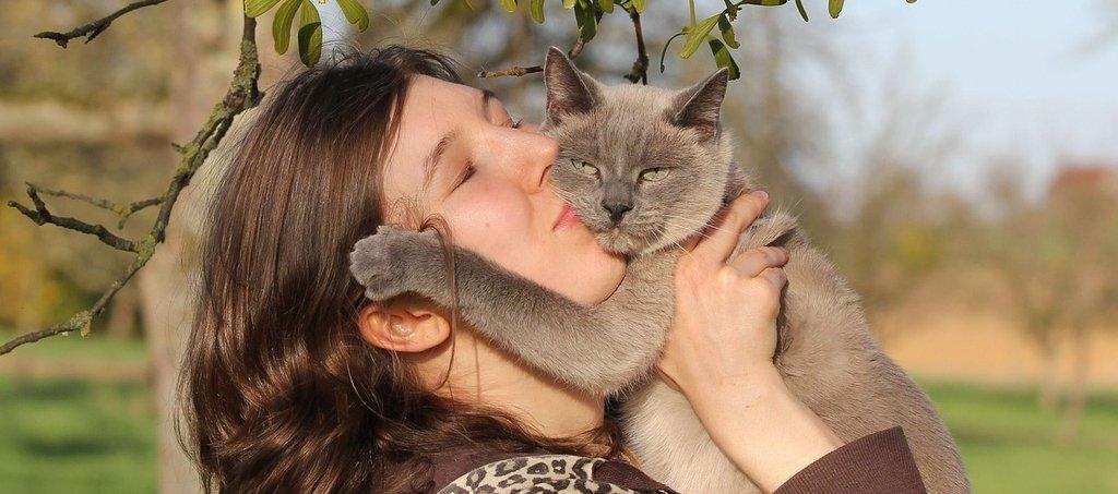 Katzenkrankenversicherungab 23,90 € monatlich