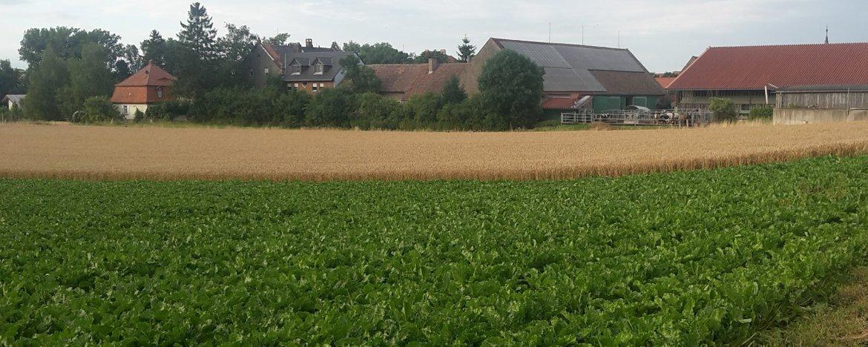 Unabhängiger Versicherungsmakler aus Bremen bietet nachhaltige Versicherungen für Landwirtschaft und Biohöfe