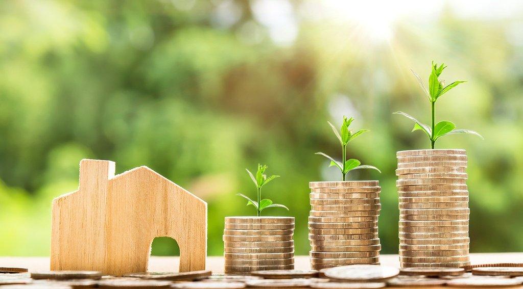 Geld wächst // ADAMIETZ & KOLLEGEN GmbH