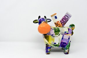 Geldkuh // ADAMIETZ & KOLLEGEN GmbH